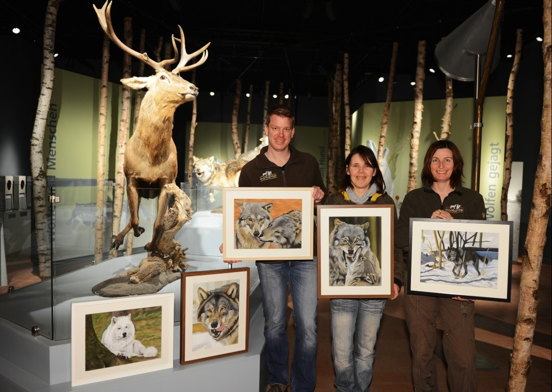 Wolfcenter, Aktuelles, Bilderausstellung, Tatjana Schneider, Malerei, Wölfe