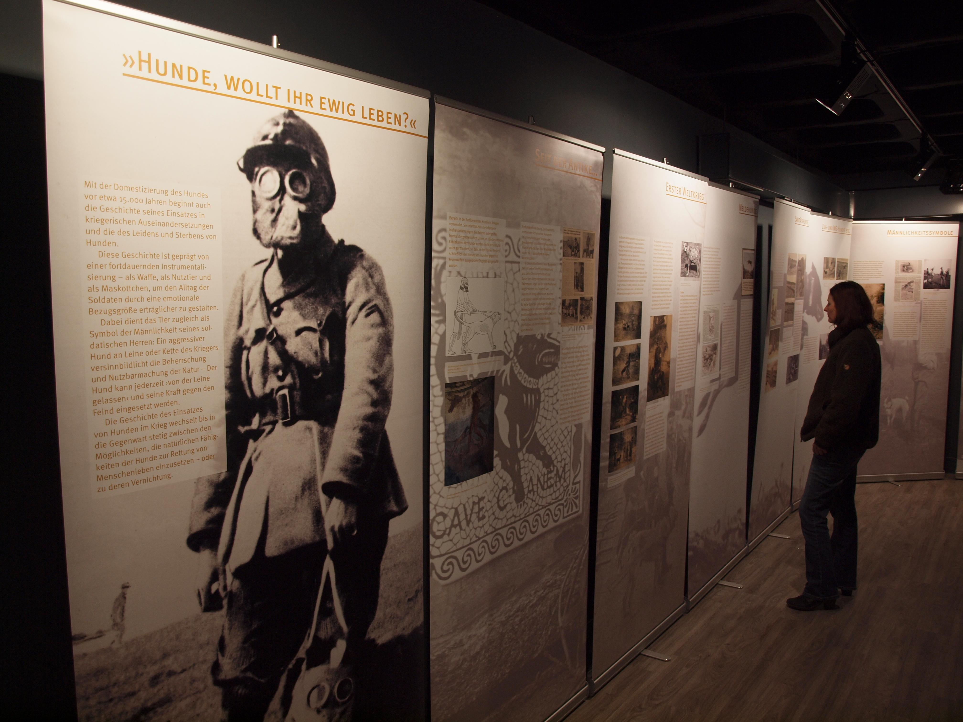 Wolfcenter, Über uns, Galerie, Sonderveranstaltung, Ausstellung