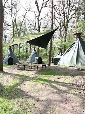 Wolfcenter. Onlineshop, Übernachtungen, Tipi, Zelten, Campen