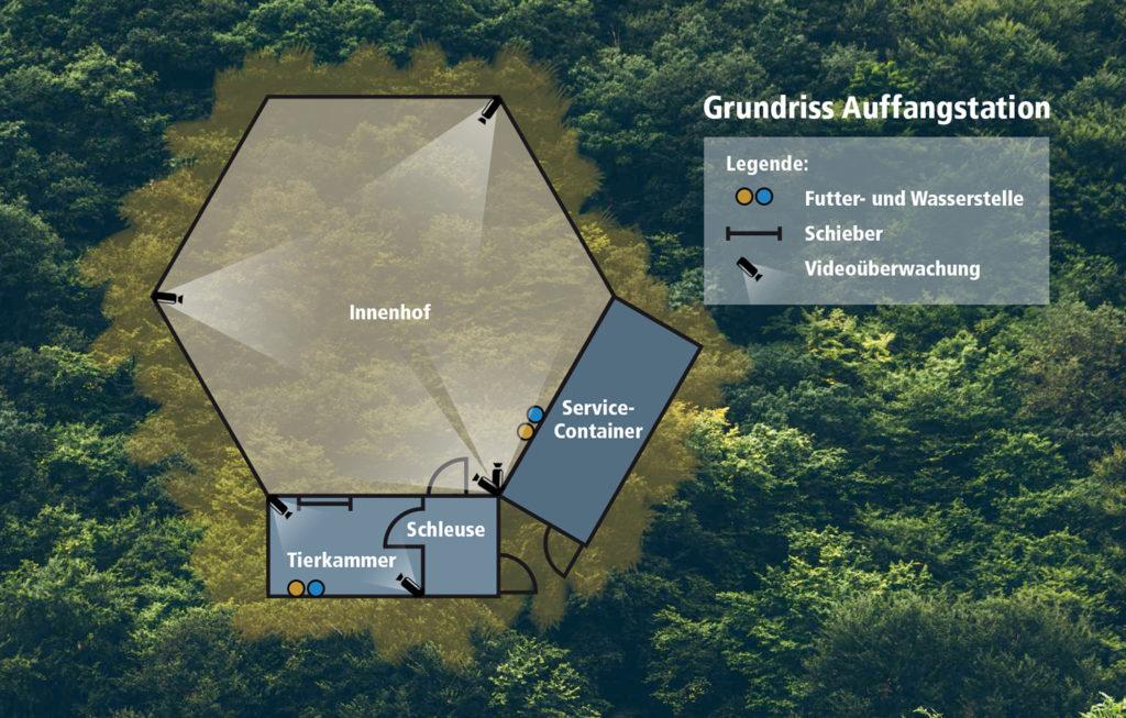 Wolfcenter, Auffangstation Niedersachsen, Wolf, verletzte Wölfe, Grundriss