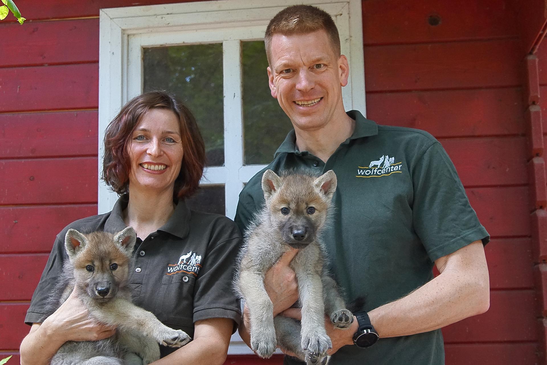 Wolfcenter, Frank Faß, Christina Faß, Welpenaufzucht, Wolfswelpen, kanadische Wölfe, Cosmo und Luna
