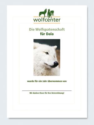Wolfcenter, Onlineshop, Patenschaften, Wolf, Wolfspatenschaft, Hudsonbay Wolf, Dala