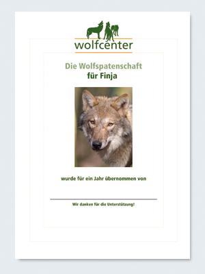 Wolfcenter, Onlineshop, Patenschaften, Wolf, Wolfspatenschaft, europäischer Grauwolf, Finja