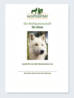 Wolfcenter, Onlineshop, Patenschaften, Wolf, Wolfspatenschaft, Hudsonbay Wolf, Kimo