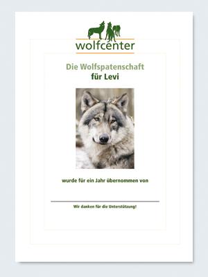 Wolfcenter, Onlineshop, Patenschaften, Wolf, Wolfspatenschaft, europäischer Grauwolf, Levi