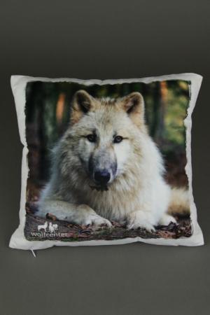 Wolfcenter, Onlineshop, Souvenirs, Kissen, weißer Wolf