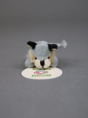 Wolfcenter, Onlineshop, Souvenirs, Magnete, Plüschtier, Wolf