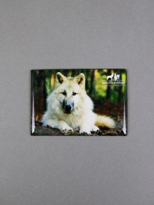 Wolfcenter, Onlineshop, Souvenirs, Magnete, weißer Wolf