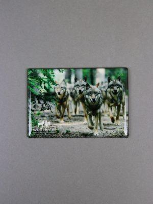 Wolfcenter, Onlineshop, Souvenirs, Magnete, Wolfsrudel