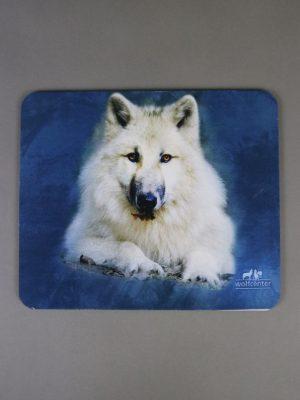 Wolfcenter, Onlineshop, Accessoires, Mousepads, Wolf, weißer Wolf, blau