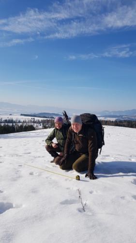 Wolfcenter Dörverden, Frank Fass, Workshop Wolf 12-tägig, Slowakei