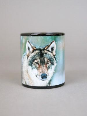 Wolfcenter, Onlineshop, Wolf, Mitja zwinkernd