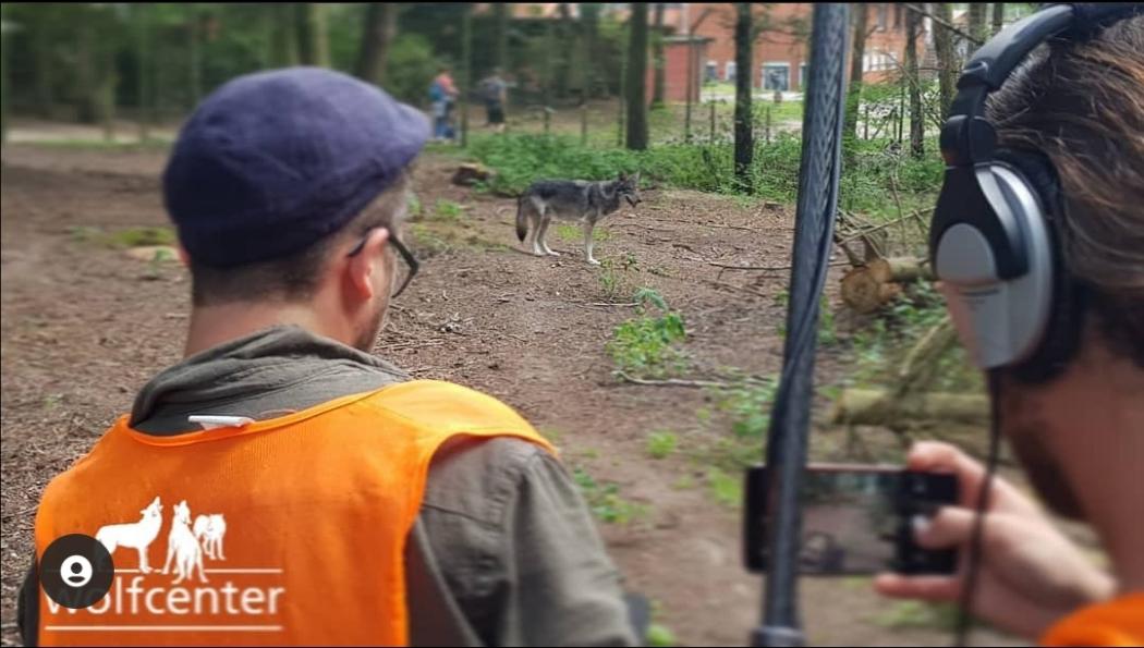 Wolfcenter Dörveden, Frank Fass, ZDFinfo, Werwolf, Dreharbeiten, Wolfsgehege